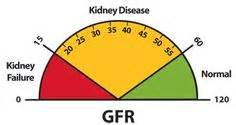 Research Kidney Disease Research Kidney Research UK